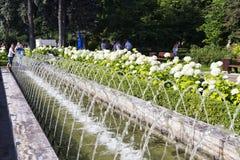 Moscú, el parque de Sokolniki con la gente, los turistas y los marinos del ejército de la marina de guerra disfrutan del día de v Imagen de archivo libre de regalías