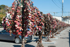 MOSCÚ, RUSIA - 21 09 2015 Árboles con las cerraduras de Imágenes de archivo libres de regalías