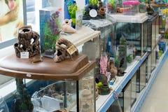 Moscú, Rusia - 16 de abril 2016 Decoraciones para el acuario en tienda del animal doméstico de cuatro patas Foto de archivo