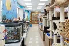 Moscú, Rusia - 16 de abril 2016 rasguño de los posts en tienda del animal doméstico de cuatro patas Imagen de archivo libre de regalías
