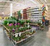 MOSCÚ, RUSIA - 15 DE FEBRERO DE 2015: Plantas en conserva en la tienda Leroy Merlin Leroy MERLIN Imagen de archivo