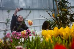 MOSCÚ, RUSIA - 12 DE MARZO DE 2018: Visitantes en el ensayo del ` de la exposición del ` de la primavera en ` del jardín de Aptek Imagen de archivo