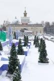 MOSCÚ, RUSIA - 29 de noviembre de 2016: Parque VDNKh, la pista de patinaje Foto de archivo libre de regalías