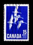 MOSCÚ, RUSIA - 24 DE NOVIEMBRE DE 2017: Un sello impreso en Canadá sh Imagenes de archivo