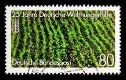 MOSCÚ, RUSIA - 3 DE OCTUBRE DE 2017: Un sello impreso en Alemania FED Imagen de archivo libre de regalías
