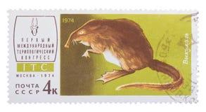MOSCÚ, RUSIA - DICIEMBRE DE 2015: un sello de los posts impreso en USS Imagen de archivo libre de regalías