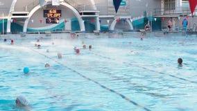 Moscú, Rusia, el 16 de febrero de 2019: La gente activa nada al aire libre en una piscina Chayka de los deportes en invierno El n almacen de video