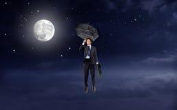 Mosca à lua Foto de Stock