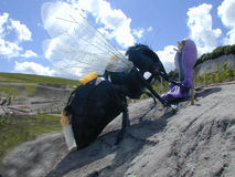 A mosca Fotografia de Stock Royalty Free