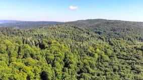 Mosca aérea do zangão sobre as montanhas cobertas com a floresta verde, a fotografia de stock