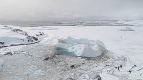 Mosca antártica de la gaviota sobre la opinión superior aérea del iceberg almacen de metraje de vídeo