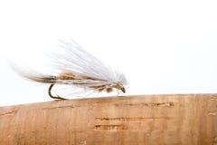 Mosca asciutta Caddis della pesca con la mosca Fotografia Stock Libera da Diritti
