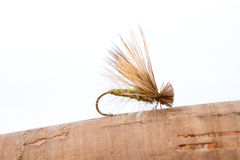 Mosca asciutta Caddis della pesca con la mosca Fotografia Stock