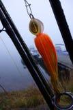 Mosca bagnata di pesca del luccio Fotografia Stock Libera da Diritti