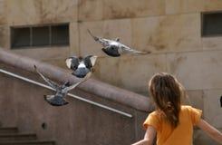 Mosca con i piccioni Immagini Stock