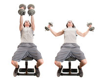 Mosca de la pesa de gimnasia imagen de archivo libre de regalías