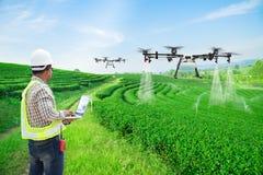 Mosca del abejón de la agricultura del control informático del wifi del uso del granjero del técnico al fertilizante rociado en l imágenes de archivo libres de regalías