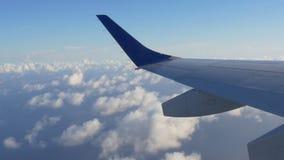 Mosca del airplain del día de verano sobre la opinión 4k la Florida los E.E.U.U. del ala del cielo