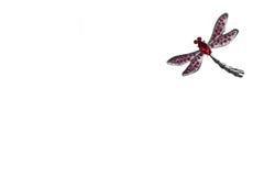 Mosca del dragón Imagenes de archivo