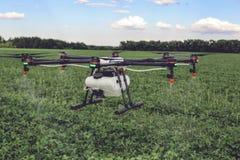 Mosca del fuco di agricoltura a fertilizzante spruzzato sui campi verdi Immagini Stock Libere da Diritti