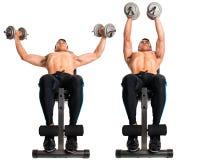 Mosca del pecho de la pesa de gimnasia imagen de archivo