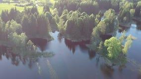 Mosca do zangão acima da paisagem do lago com as árvores no tempo de mola filme