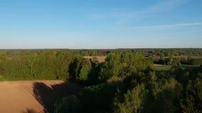 Mosca do zangão alta sobre a terra da manhã com campos e bosques video estoque