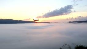 Mosca do zangão dentro durante o nascer do sol video estoque