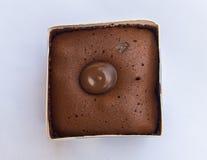 Mosca en la torta de chocolate oscura Imagenes de archivo