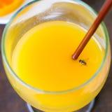 Mosca en vidrio del zumo de naranja imagen de archivo