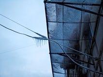 Mosca in inverno Immagine Stock