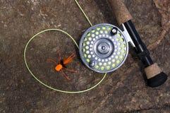 Mosca Rod e mosca arancio del ragno su una roccia asciutta Immagini Stock