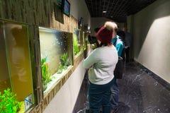 Mosca, Russia - 10 dicembre 2016 La gente intorno all'acquario in oceanarium della città del croco a Krasnogorsk Fotografia Stock