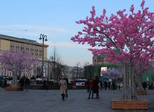 MOSCA, RUSSIA, il 6 aprile 2018, Mosca è decorata per Pasqua Immagine Stock