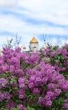 Mosca, Russia - 13 maggio 2019: Cespugli del lill? di fioritura e della cattedrale di Cristo il salvatore nei precedenti fotografie stock