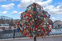 MOSCA, RUSSIA - 23 marzo 2017: Albero con le serrature bloccate di nozze Fotografie Stock