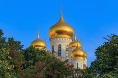 Mosca, Russia - 2 settembre 2018: Cupole dorate della cattedrale di Cremlino di Mosca contro cielo blu e gli alberi verdi fotografia stock