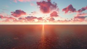 Mosca sobre el mar en la puesta del sol almacen de video