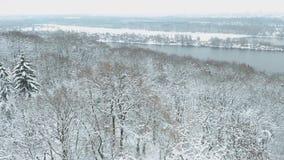 Mosca sobre a floresta nevado no banco de rio vídeos de arquivo