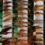 Moscas para flyfishing da truta Imagem de Stock Royalty Free