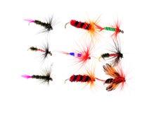 Moscas secas aisladas de la pesca Imagen de archivo libre de regalías