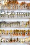 Moscas secas del detalle de la caja de la mosca Imagenes de archivo