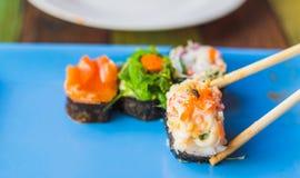 Moscas sucias en un sushi Fotos de archivo libres de regalías