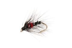 Moscas usadas por los pescadores de la mosca Imagenes de archivo