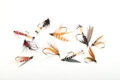 Moscas usadas por los pescadores de la mosca Imágenes de archivo libres de regalías