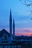 Mosch y puesta del sol Imagen de archivo libre de regalías