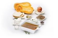 Moschata för Cucurbita för Butternutsquash med olika ingredienser Fotografering för Bildbyråer