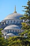 Moschea blu, Instanbul fotografia stock libera da diritti