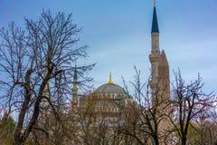Moschea blu maestosa a Costantinopoli, Turchia fotografie stock