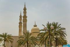 Moschea con le palme Immagini Stock